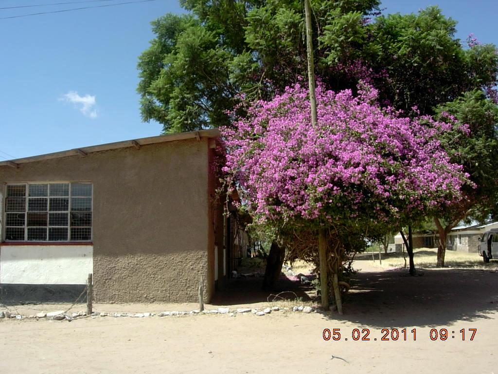 mariannes-billeder-fra-kenya-015